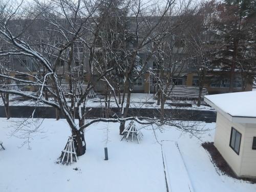 重文本館内巡回&ライトアップ投光器雪囲いボックスの除雪_c0075701_17140105.jpg