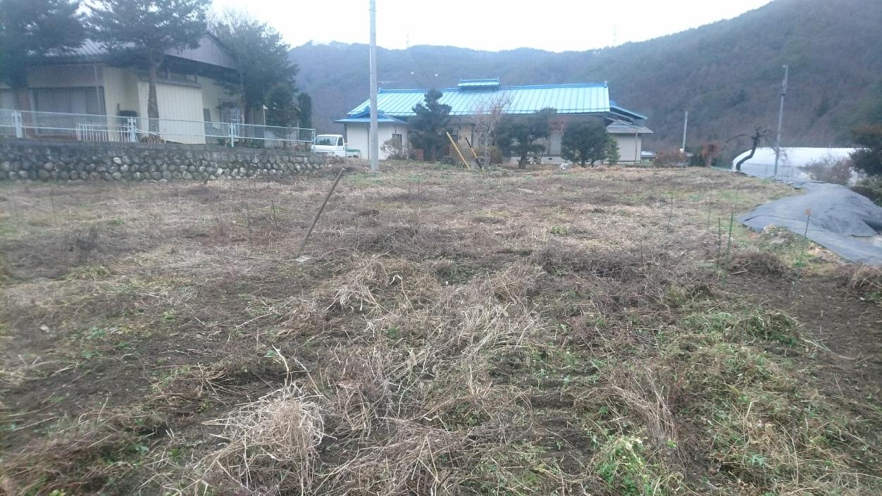 年末年始も自然農☆ (^人^)_e0015223_10551668.jpg