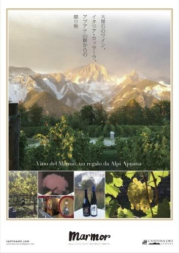 ワイン会のお知らせ_d0136540_11141489.jpg