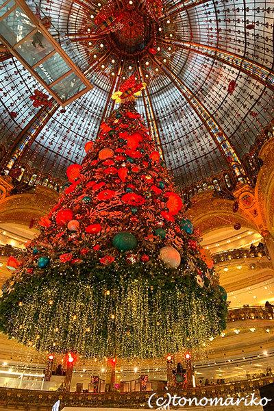 ギャラリーラファイエットのクリスマスツリー_c0024345_20351668.jpg