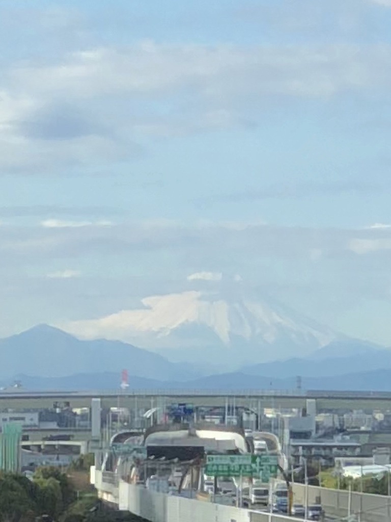 北陸新幹線 富山 ▶ 東京_a0384046_12420657.jpg