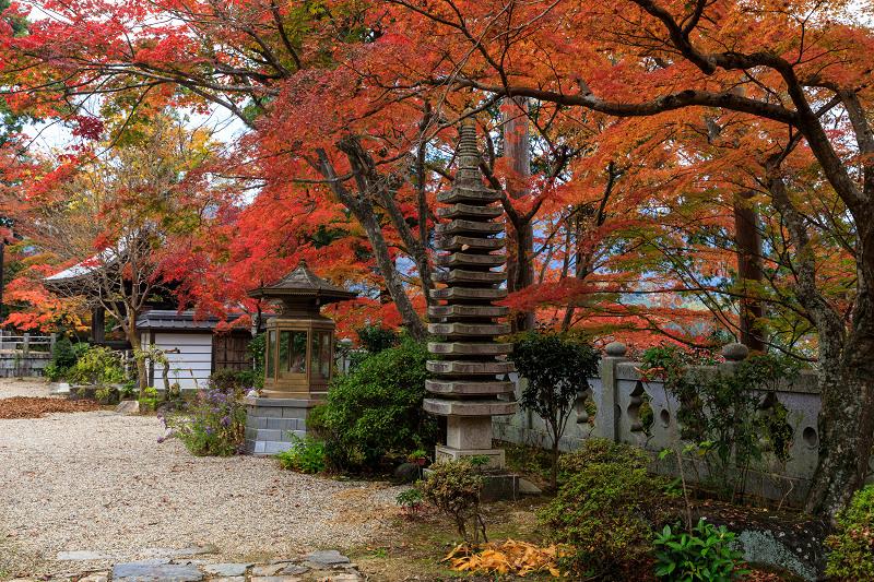 紅葉が彩る京都2019 和束の山寺にて_f0155048_2310277.jpg