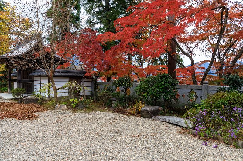 紅葉が彩る京都2019 和束の山寺にて_f0155048_23104917.jpg