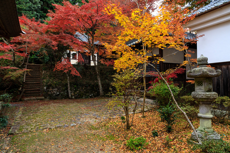 紅葉が彩る京都2019 和束の山寺にて_f0155048_2310558.jpg