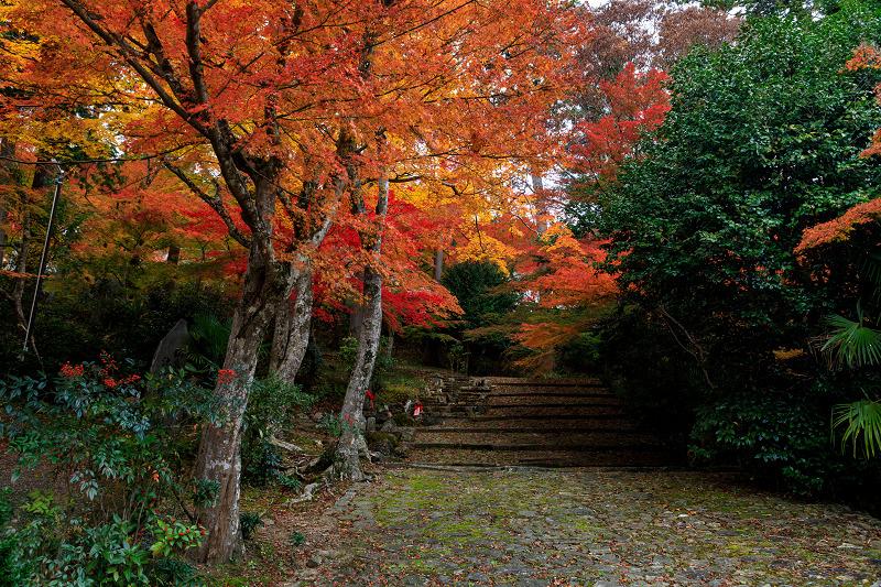 紅葉が彩る京都2019 和束の山寺にて_f0155048_2314112.jpg
