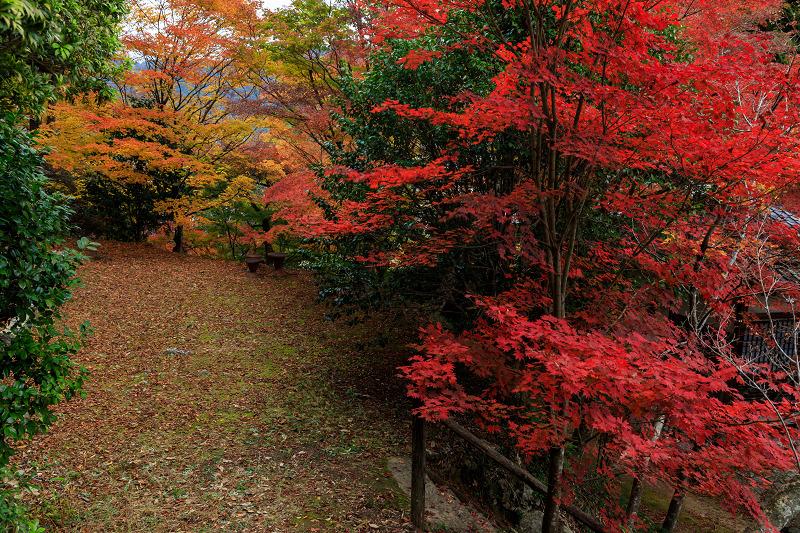 紅葉が彩る京都2019 和束の山寺にて_f0155048_23171271.jpg