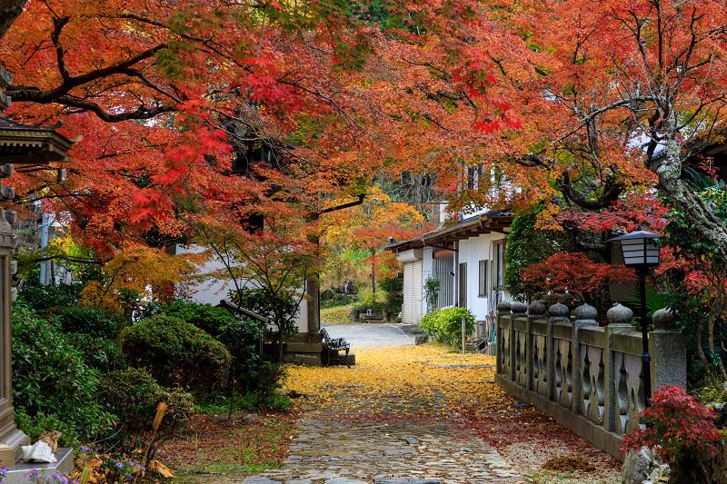 紅葉が彩る京都2019 和束の山寺にて_f0155048_23201560.jpg