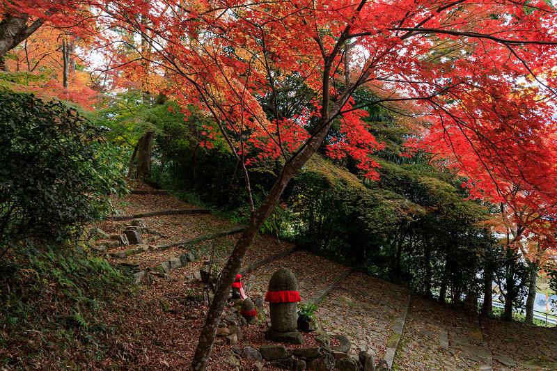 紅葉が彩る京都2019 和束の山寺にて_f0155048_23205149.jpg