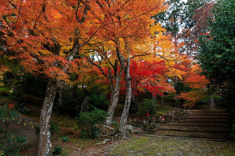紅葉が彩る京都2019 和束の山寺にて_f0155048_232144100.jpg