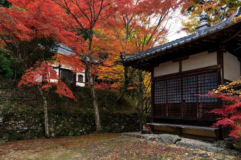 紅葉が彩る京都2019 和束の山寺にて_f0155048_23224277.jpg