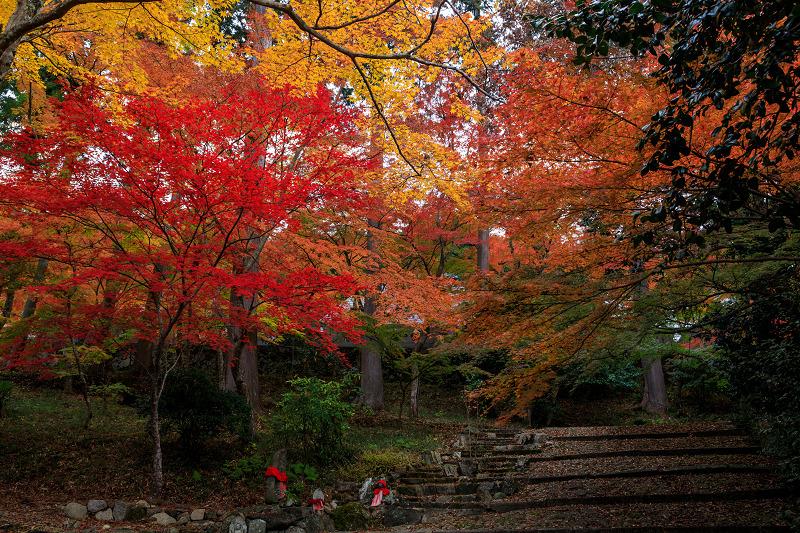 紅葉が彩る京都2019 和束の山寺にて_f0155048_2323834.jpg