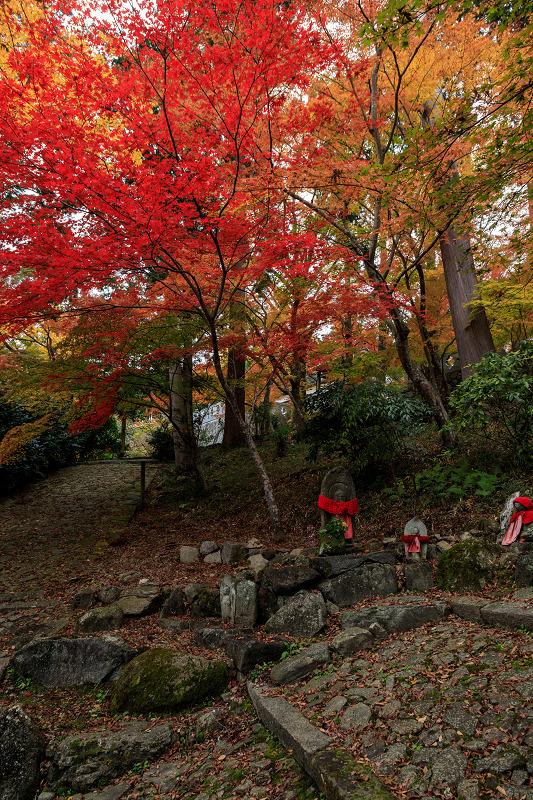 紅葉が彩る京都2019 和束の山寺にて_f0155048_2325324.jpg
