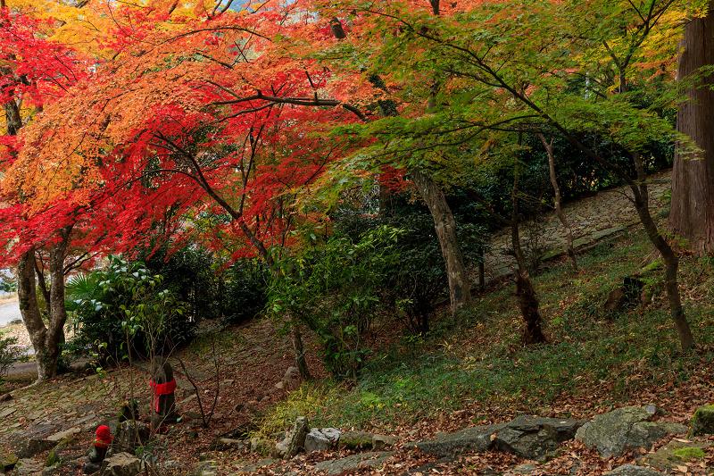 紅葉が彩る京都2019 和束の山寺にて_f0155048_23317.jpg