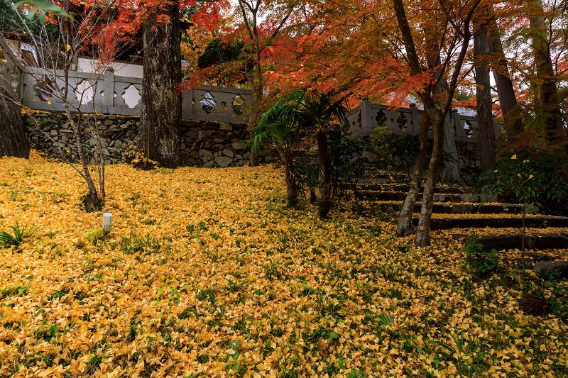 紅葉が彩る京都2019 和束の山寺にて_f0155048_2333949.jpg
