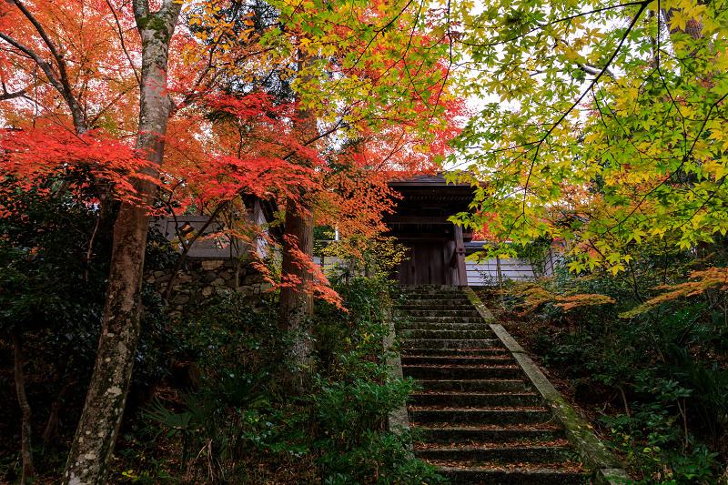 紅葉が彩る京都2019 和束の山寺にて_f0155048_233691.jpg