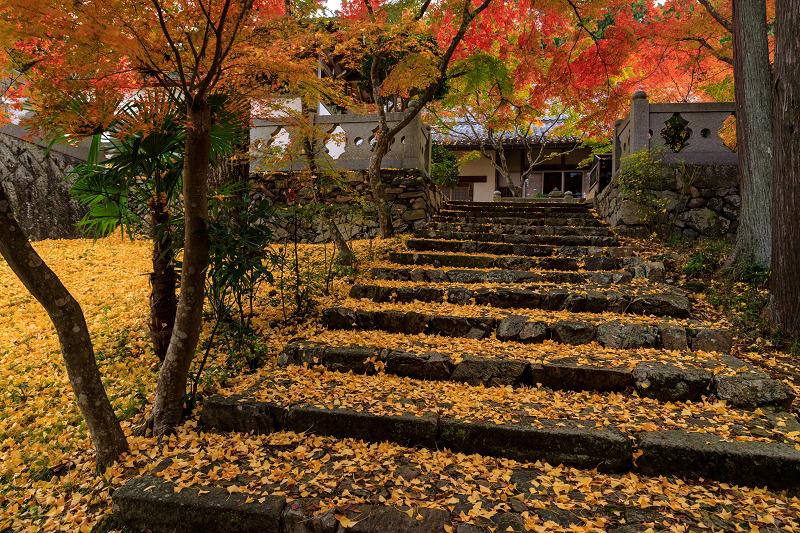 紅葉が彩る京都2019 和束の山寺にて_f0155048_2344154.jpg