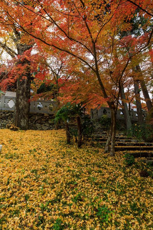 紅葉が彩る京都2019 和束の山寺にて_f0155048_2345987.jpg