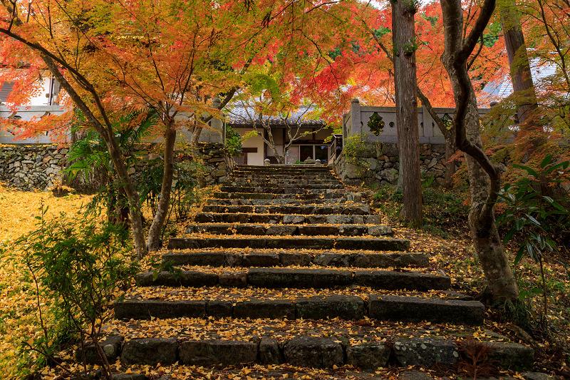 紅葉が彩る京都2019 和束の山寺にて_f0155048_2363148.jpg