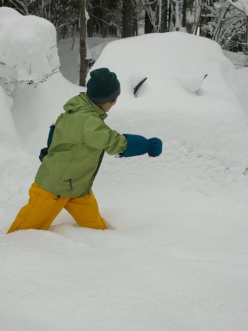カステラとアカゲラ・・・雪がある時、ない時_d0005250_17293496.jpg