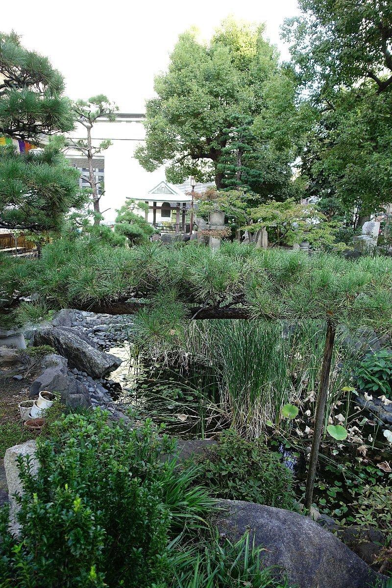 南御堂庭園 獅子吼園_c0112559_08525349.jpg