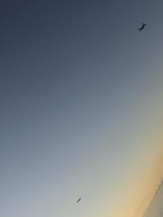 太陽と太陽が沈むトキ 富士山_d0105967_23460371.jpeg