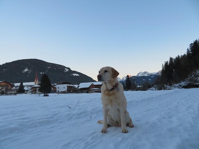 南チロルで年越し(1)~素晴らしいスキー日和_c0211876_07343263.jpg