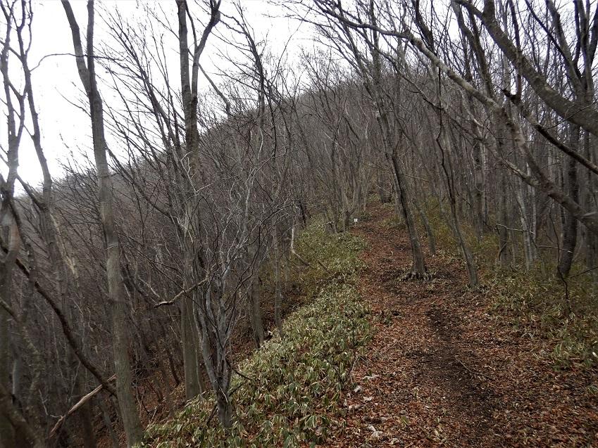 青麻山(38回目) ~ 2020年1月5日_f0170180_21272440.jpg
