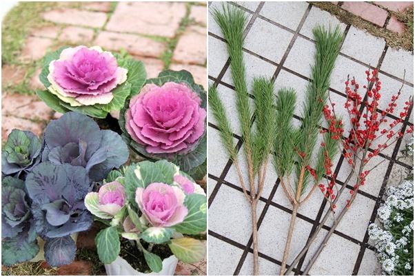 ◆松飾りの寄せ植え作り_e0154682_23013663.jpg