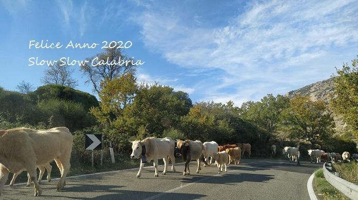 Felice Anno 2020!_c0171485_00391695.jpg