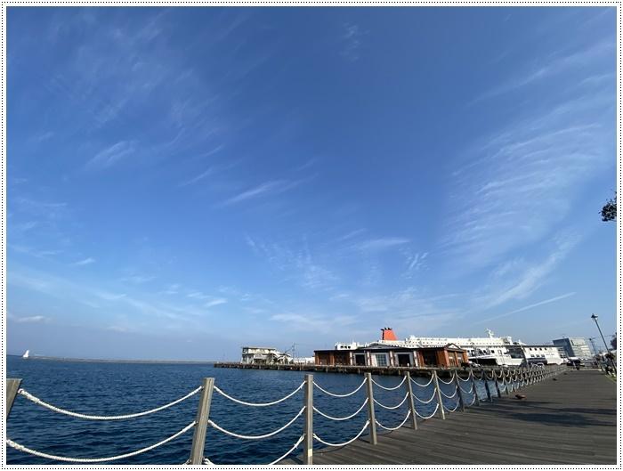 2020年、初めてのかんたん港園も、静かで穏やかで暖かで。。。良いお散歩スタートができました。_b0175688_21113608.jpg