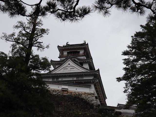 NHK大河ドラマ「麒麟がくる」がスタート、感動です、このドラマ大ヒット間違いなし・・・内容も良い映像が美し過ぎる_d0181492_23365400.jpg