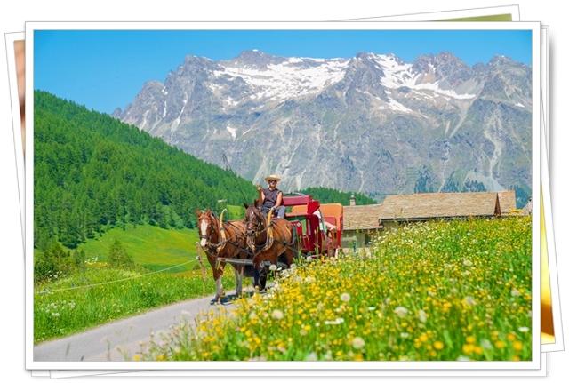 スイス旅行_b0145398_22503374.jpg