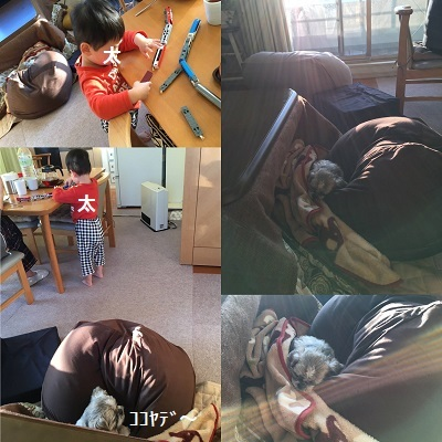 2020年ブログ初め~♪_f0372998_21035924.jpg
