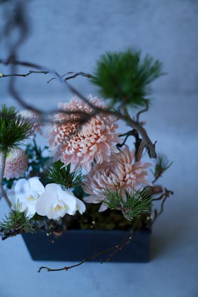 迎春の花_b0208604_21002238.jpg