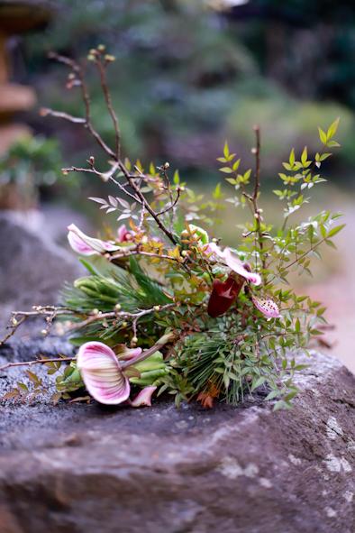 迎春の花_b0208604_21003782.jpg
