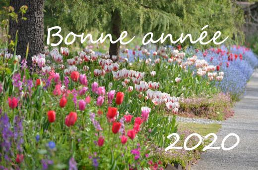 2020年明けましておめでとうございます♪_e0135518_13531201.jpg