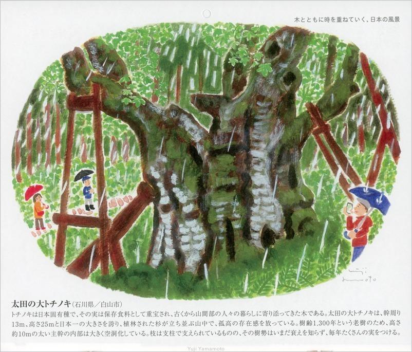 ヤクルトカレンダー2020年_d0253520_10083635.jpg