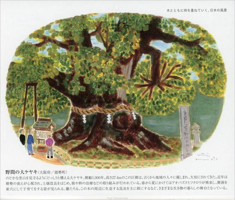 ヤクルトカレンダー2020年_d0253520_10091689.jpg