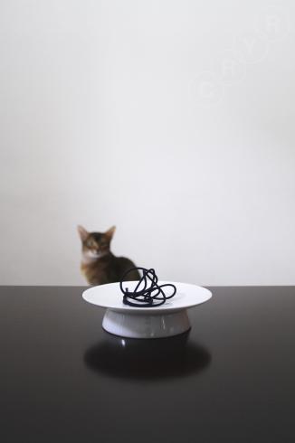 [猫的]ルウ好み_e0090124_22274627.jpg