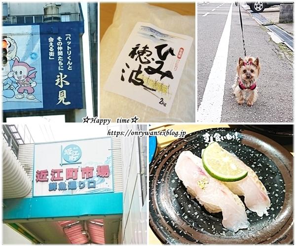 今年の初弁は鮭弁当と年末旅行日記③♪_f0348032_17305416.jpg