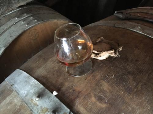 Cognac SAUNIER Hors d\'âge 1971再開封と渡航まであと1週間_d0011635_16283211.jpg