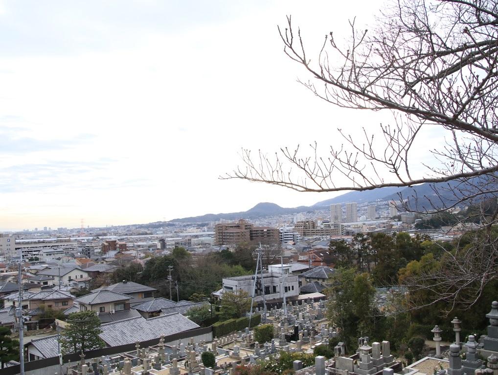 阪急8000系 8007F 大阪梅田 中山観音で初詣_d0202264_1556415.jpg