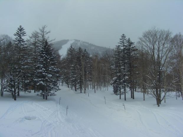 雪と氷を描きたい_d0193569_08270972.jpg