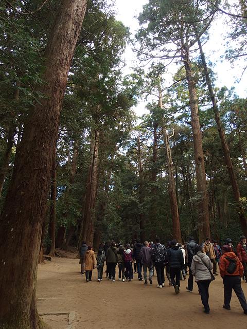 初詣は鹿島神宮と息栖神社へ (2020/1/4)_b0006870_6595086.jpg