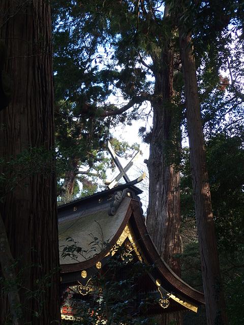 初詣は鹿島神宮と息栖神社へ (2020/1/4)_b0006870_722692.jpg