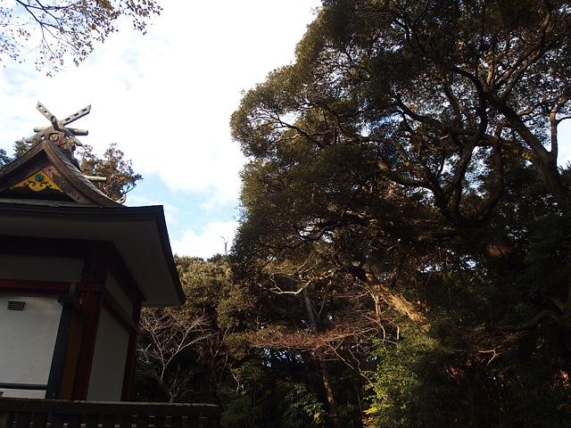 初詣は鹿島神宮と息栖神社へ (2020/1/4)_b0006870_74460.jpg