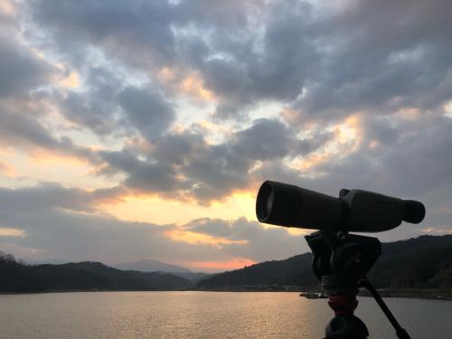 新春探鳥遠征_a0153971_23560578.jpg
