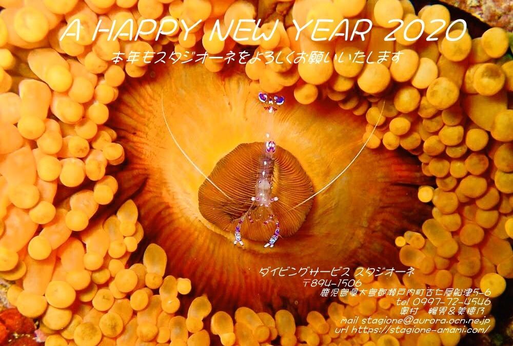 「謹賀新年!」_b0033573_14074966.jpg