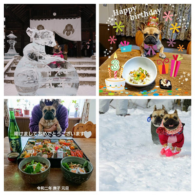 Happy new year 2020 & Happy birthday 3_b0056476_12182396.jpg