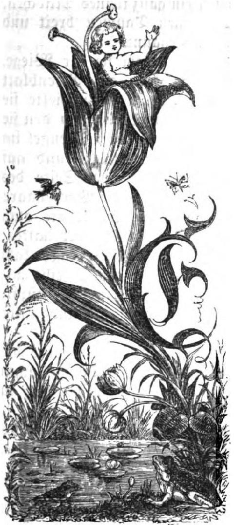 ドイツの児童書から人魚姫の挿絵_c0084183_16030953.jpg